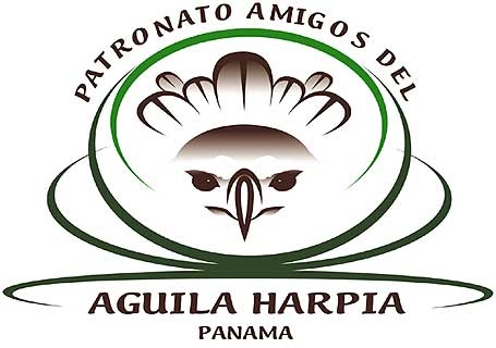 logo-aguila-harpia-455
